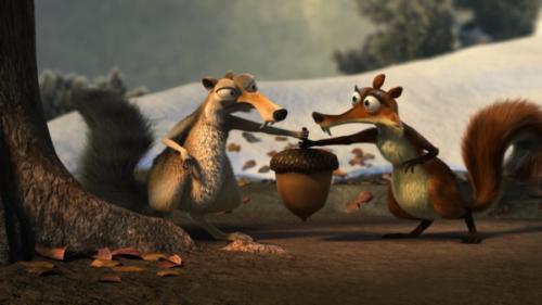 A mókus-szerelem nem ismer határokat
