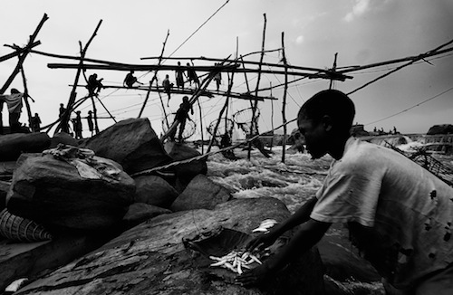 Torday Emil nyomában Kongóban