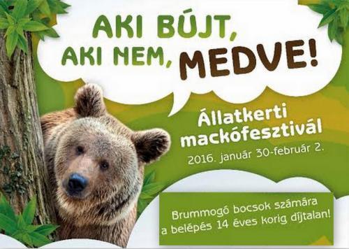 Mackófesztivál plakát