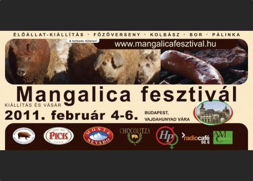 Mangalica fesztivál 2011