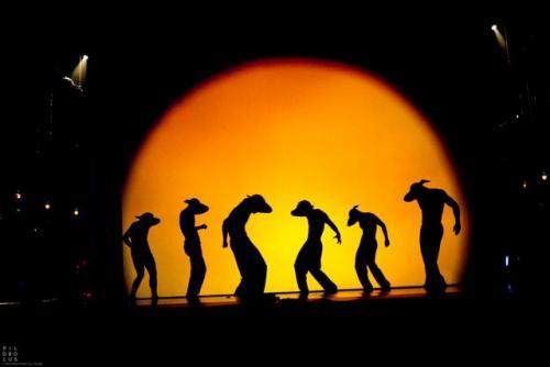 Shadowland, előadás